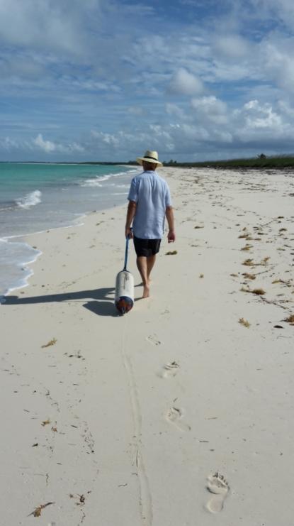 Beachcombing!