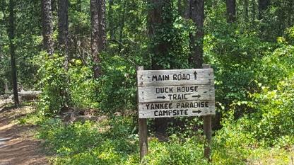 Yankee Paradise - aSouthern joke!